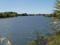 Rangitaiki Río