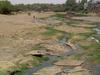 River  Dnyanganga
