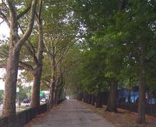Riverside Park Walkway
