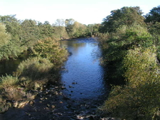 River Swale From Catterick Bridge