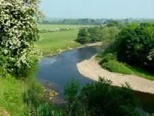 River Swale Near Brompton On Swale