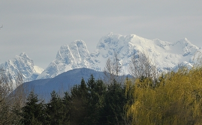 Mount Robie Reid From Langley