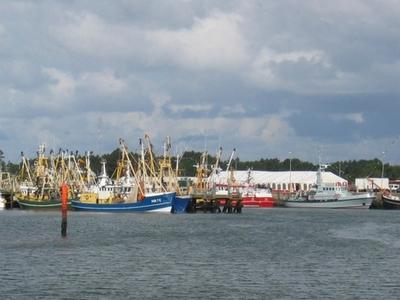 Romo Island Harbour