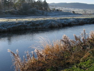 River Coquet Near Rothbury
