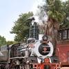 Rovos Rail Train