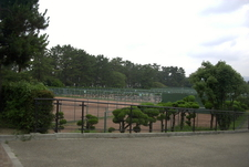 Tennis Courts In The Park