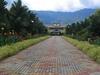 Sabah Agriculture Park - View