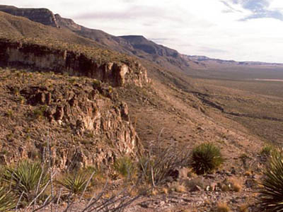 Sacramento Mountains (New Mexico)