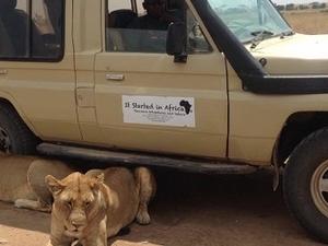 6 days safari real tanzania experience Fotos