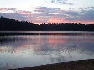 Sagehen Creek Campground