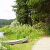 Sagehen Reservoir Trail