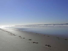 Salinas River State Beach