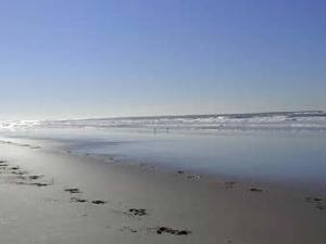 Salinas River State Beach