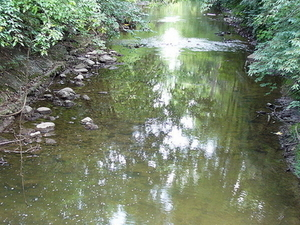 Sal Tenedor río Vermilion