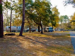 Salt Springs Campground