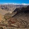 Samar Terraced Cultivation - Mustang - Nepal Annapurna
