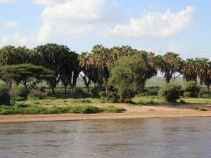 Samburu Safari Package Photos