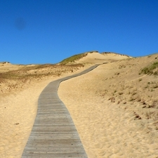 Sand Dunes In Curonian Spit