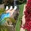 Sandpiper Units Merimbula Pool From Balcony