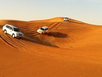 Desert Tour - Wahiba Sands