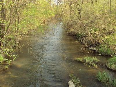 Sandy Creek Michigan