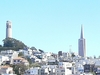 San Francisco Skyline With Coit Tower & Transamerica