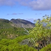 Sanhedrin Wilderness