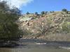 San Miguel River At Naturita