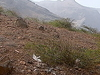 Sao  Nicolau Route