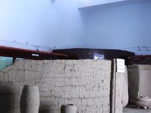 Saputara Museu Tribal