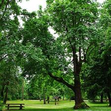 Sarah Helmick State Recreation Site