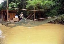 Sarawak Borneo Adventure Miri Loagan Bunut