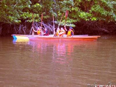 Sarawak Limbang Limpaki Wetland - View