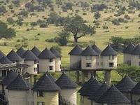 3 Days Tsavo Safari Packages