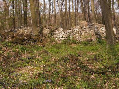 Sarvaly Forest, Sümeg