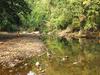Satkosia Wildlife Sanctuary