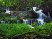 Sawkill Falls - Delaware State Forest - Pike County PA