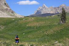 Scenic Marion Lake Trail- Grand Tetons - Wyoming - USA
