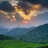 Scenic Munnar - Kerala