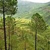 Scenic Uttarakhand Landscape