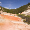 Scenic Whistler Geyser Area - Yellowstone - USA