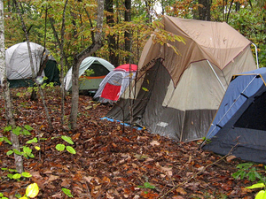 Schoolhouse Point Campground