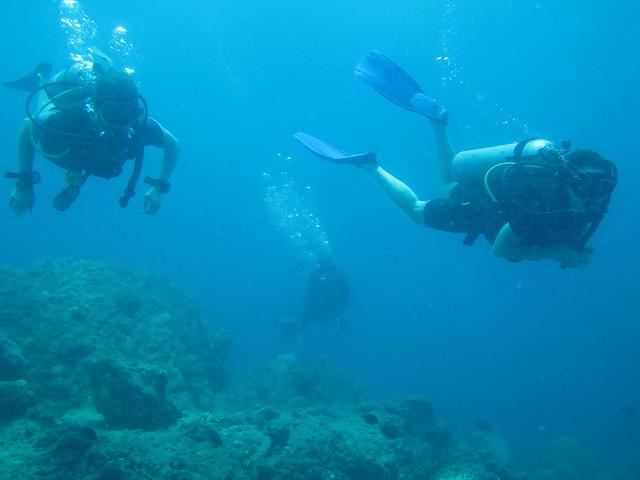 Dive Tour in Andaman Photos