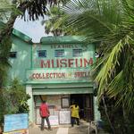 Sea Shell Museum