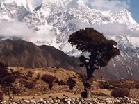 Everest Three Pass Trekking