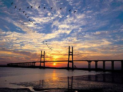 Seohae Bridge