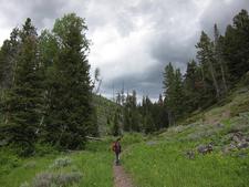 Sepulcher Mountain Trail At Yellowstone