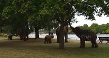 Serpentine Elephants