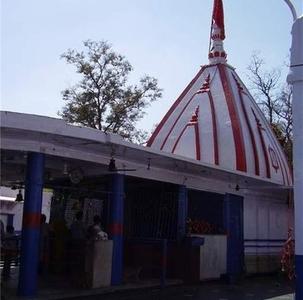 Shakumbhri Devi