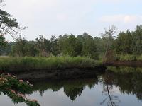 Shallotte Río